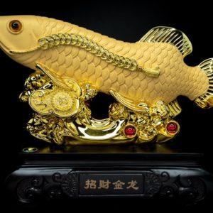 ปลามังกร  ขนาด  สูง 21 ซม กว้าง 24ซม ลึก 11 ซม fis0012