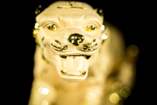 เสือพ่นทราย ทรายทอง