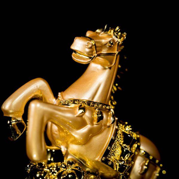 ม้าทองถุงทอง